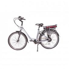 Elektro Bike